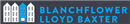 Blanchflower Lloyd Baxter Limited logo